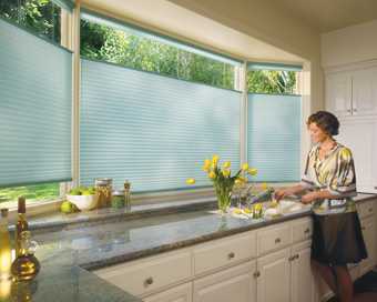 Duette Cellular Shades